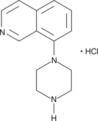 8-<wbr/>piperazin-<wbr/>1-<wbr/>yl-<wbr/>Isoquinoline (hydro<wbr>chloride)
