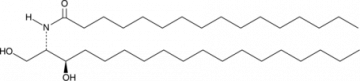 C16 dihydro Ceramide (d18:0/16:0)