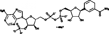 NADPH (sodium salt)