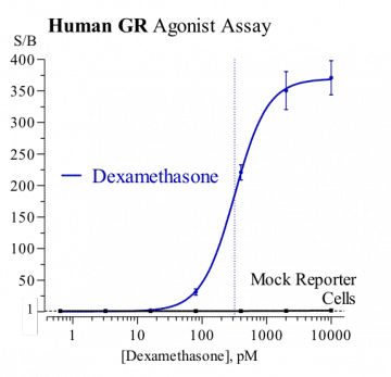 Human GR Reporter Assay System, 1 x 384-well format assay