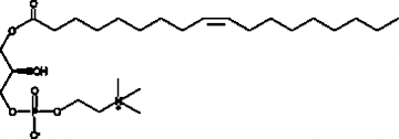 1-Oleoyl-2-hydroxy-<em>sn</em>-glycero-3-PC