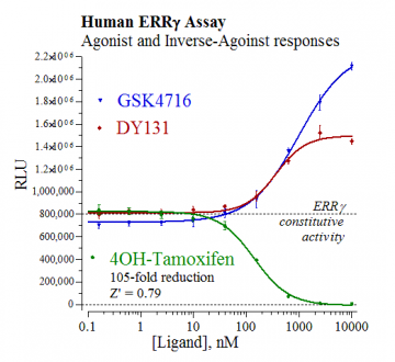 Human ERRγ Reporter Assay System, 1 x 96-well format assay