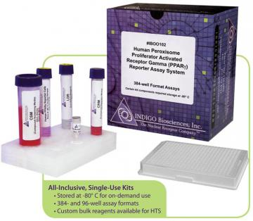 Mouse GR Reporter Assay System, 1 x 96-well format assays