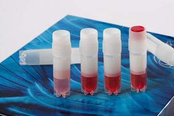 Sampling tubes with PHMB