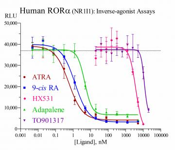 Human RORα Reporter Assay System, 1 x 96-well format assay
