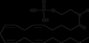 Arachidonoyl Ethanolamide Phosphate