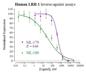 Human LRH-1 Reporter Assay System, 3 x 32 assays in 96-well format