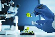 Biotechs vs Chemicals Did you Know Bertin Pharm