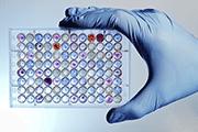 Oxidative Stress Market Bertin Bioreagent