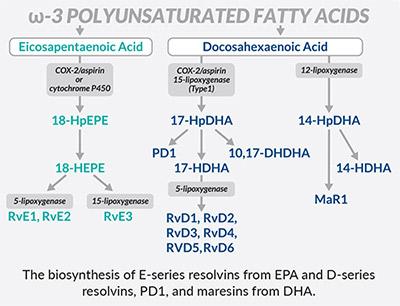 Resolving Cayman Chemical Schema - Bertin Bioreagent