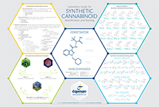 Laboratory Guide for Synthetic Cannabinoid Identification and Naming Bertin Bioreagent