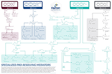 Resolving Mediator Poster