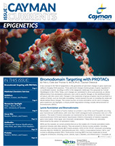 Epigenetics Current Cayman Bertin Bioreagent
