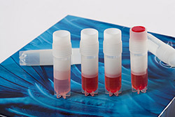 Sampling tubes with Indomethacin Bertin Bioreagent