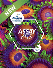 Assay Kits Cayman Bertin Bioreagent